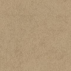 "Sunbrella® Terry Upholstery 54"" Beige 78001-0000"