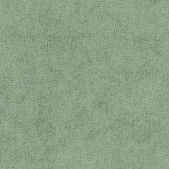 """Sunbrella® Terry Upholstery 54"""" Moss 78007-0000"""