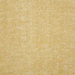 "Sunbrella® Fusion Upholstery 54"" Chartres Barley 45864-0002"