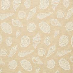 "Sunbrella® Fusion Upholstery 54"" Beachcomber Dune 1357-0001"