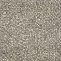 "Sunbrella® Fusion Upholstery 54"" Poet Driftwood 47089-0002"