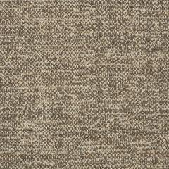 "Sunbrella® Fusion Upholstery 54"" Poet Sparrow 47089-0009"