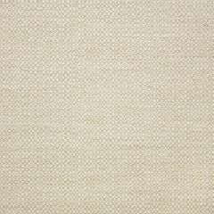 "Sunbrella® Elements Upholstery 54"" Action Linen 44285-0000"