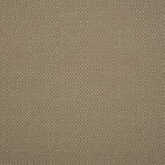 """Sunbrella® Elements Upholstery 54"""" Action Taupe 44285-0003"""