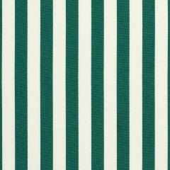 "Sunbrella® Elements Upholstery 54"" Mason Forest Green 5630-0000"