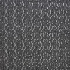 "Sunbrella® Makers Upholstery 54"" Adaptation Stone 69010-0002"