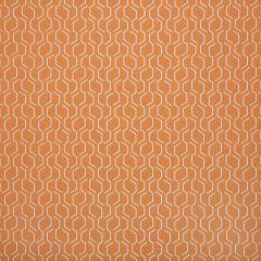 "Sunbrella® Makers Upholstery 54"" Adaptation Apricot 69010-0003"