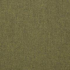 "Sunbrella® Makers Upholstery 54"" Blend Cactus 16001-0005"