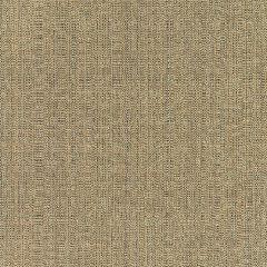 """Sunbrella® Elements Upholstery 54"""" Linen Pampas 8317-0000"""