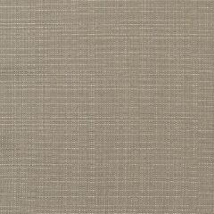 "Sunbrella® Elements Upholstery 54"" Linen Taupe 8374-0000"