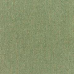 "Sunbrella® Rain Upholstery 54"" Canvas Fern 5487-0000 77"