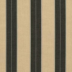 "Sunbrella® Elements Upholstery 54"" Berenson Tuxedo 8521-0000"