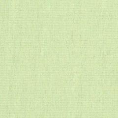 "Sunbrella® Rain Renaissance Upholstery 54"" Heritage Moss 18012-0000 77"