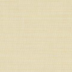 "Sunbrella® Elements Upholstery 54"" Dupione Pearl 8010-0000"