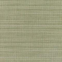 "Sunbrella® Elements Upholstery 54"" Dupione Laurel 8015-0000"