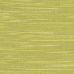 """Sunbrella® Elements Upholstery 54"""" Dupione Peridot 8024-0000"""
