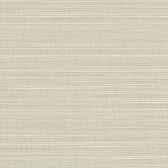 "Sunbrella® Elements Upholstery 54"" Dupione Dove 8069-0000"