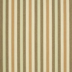 "Sunbrella® Fusion Upholstery 54"" Bangle Adobe 40247-0004"