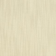 """Sunbrella® Fusion Upholstery 54"""" Cannes Oyster 42035-0009"""