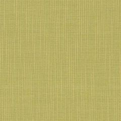 "Sunbrella® Fusion Upholstery 54"" Strata Linden 40245-0007"
