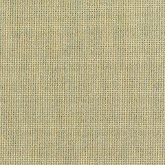 """Sunbrella® Fusion Upholstery 54"""" Canyon Wren 42006-0002"""