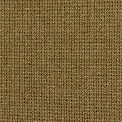 "Sunbrella® Fusion Upholstery 54"" Canyon Cocoa 42006-0006"
