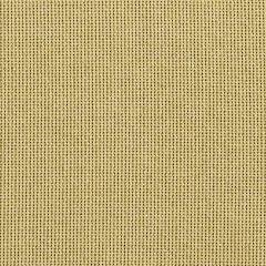 "Sunbrella® Fusion Upholstery 54"" Canyon Antique 42006-0012"