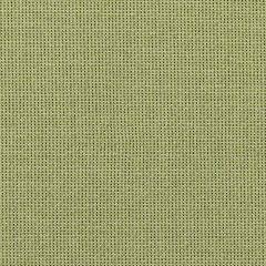 "Sunbrella® Fusion Upholstery 54"" Canyon Spring 42006-0009"