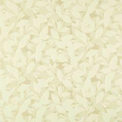 "Sunbrella® Fusion Upholstery 54"" Forsythia Parchment 41010-0005"