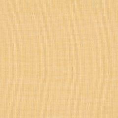 """Sunbrella® Sheer Upholstery 54"""" Mist Honey 52001-0003"""
