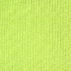 "Sunbrella® Fusion Upholstery 54"" Meridian Lime 40061-0013"