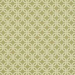 "Sunbrella® Fusion Upholstery 54"" Neo Silk 45718-0000"