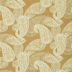 "Sunbrella® Fusion Upholstery 54"" Bangladesh Dune 45353-0004"