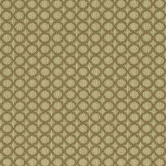 """Sunbrella® Fusion Upholstery 54"""" Hoopla Cocoa 46008-0012"""