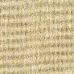"Sunbrella® Fusion Upholstery 54"" Plush Wren 70011-0008"