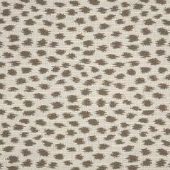 "Sunbrella® Fusion Upholstery 54"" Agra Pebble 145147-0002"