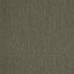 "Sunbrella® Fusion Upholstery 54"" Flagship Hedge 40014-0150"