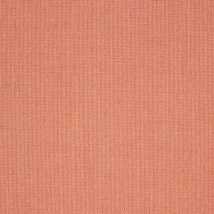"Sunbrella® Fusion Upholstery 54"" Flagship Guava 40014-0160"