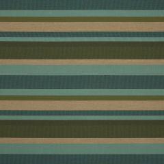 """Sunbrella® Fusion Upholstery 54"""" Scope Foliage 40465-0005"""