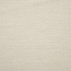 "Sunbrella® Fusion Upholstery 54"" Tailored Snow 42082-0000"