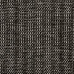 """Sunbrella® Fusion Upholstery 54"""" Tailored Coal 42082-0005"""