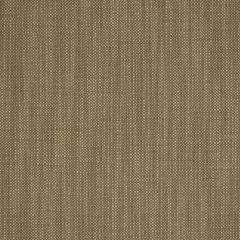 """Sunbrella® Fusion Upholstery 54"""" Rochelle Spice 44193-0001"""
