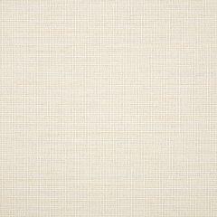 "Sunbrella® Fusion Upholstery 54"" Demo Salt 44282-0000"