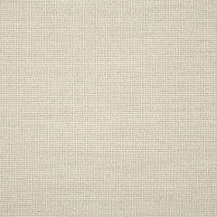 "Sunbrella® Fusion Upholstery 54"" Demo Parchment 44282-0001"