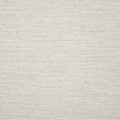 "Sunbrella® Fusion Upholstery 54"" Demo Putty 44282-0002"