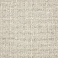 "Sunbrella® Fusion Upholstery 54"" Demo Fog 44282-0003"