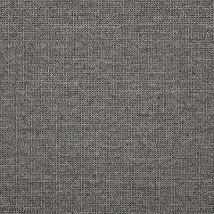 """Sunbrella® Fusion Upholstery 54"""" Demo Graphite 44282-0005"""