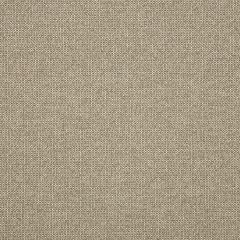"Sunbrella® Fusion Upholstery 54"" Demo Stucco 44282-0007"