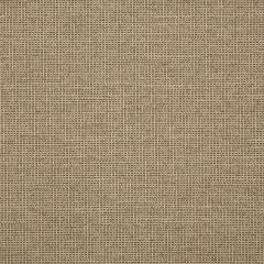 "Sunbrella® Fusion Upholstery 54"" Demo Sparrow 44282-0008"