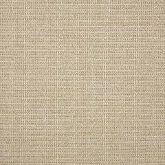 "Sunbrella® Fusion Upholstery 54"" Demo Wren 44282-0009"